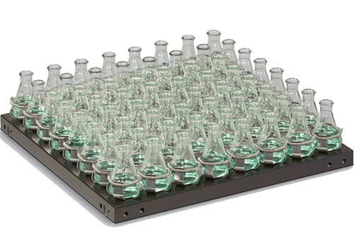 3523-3: MaxQ Dedicated Platform 11x13 for 50 mL Erlenmeyer Flasks