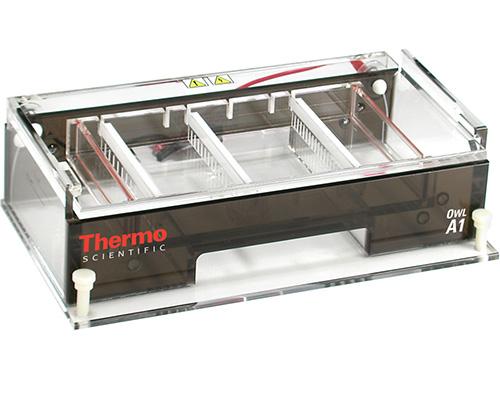 Thermo Scientific Model A1