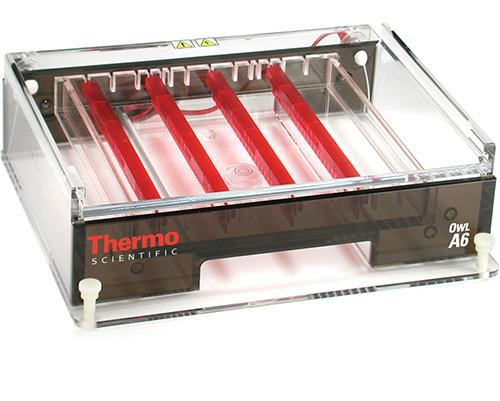Thermo Scientific Model A6