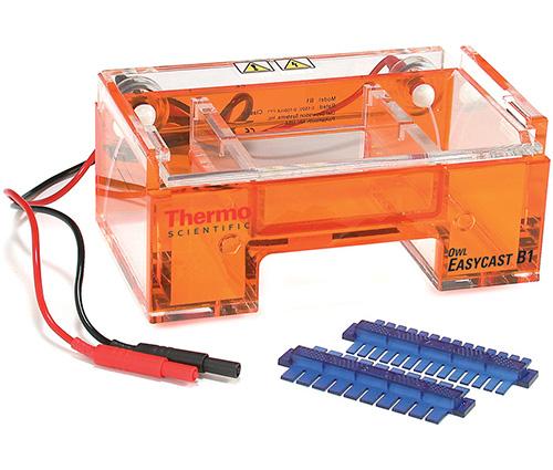 B1: Owl EasyCast Mini Gel System, 9 x 11 cm