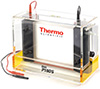 Thermo Scientific P10DS-2