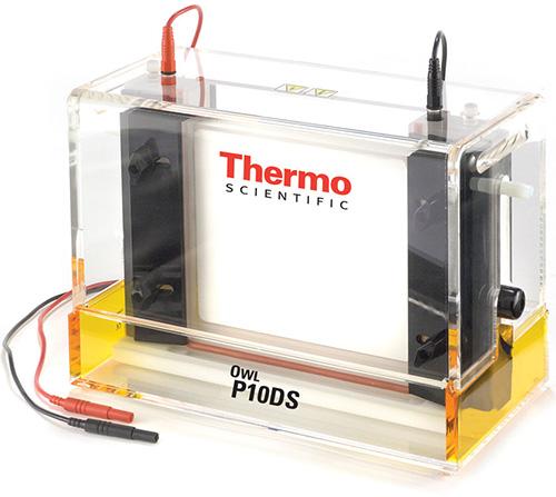 Thermo Scientific Model P10DS-2