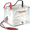 Thermo Scientific P82