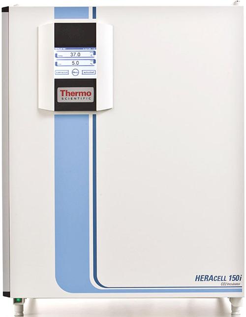 Thermo Scientific Model 51026282