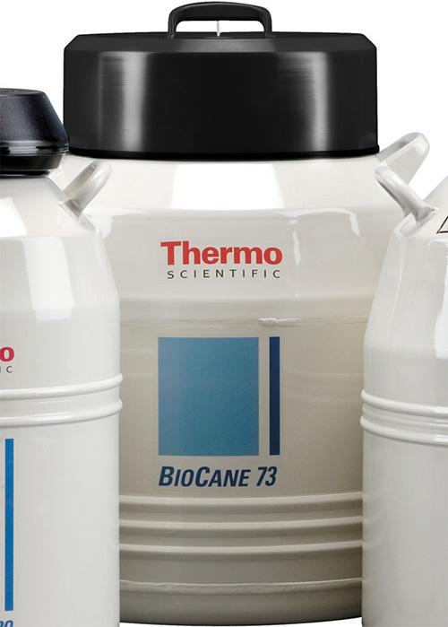 Thermo Scientific Model CK509X6