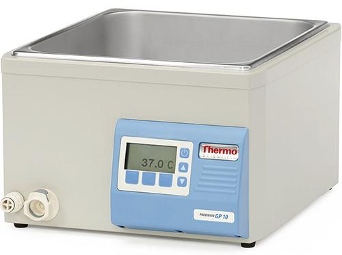 Thermo Scientific Model TSGP10
